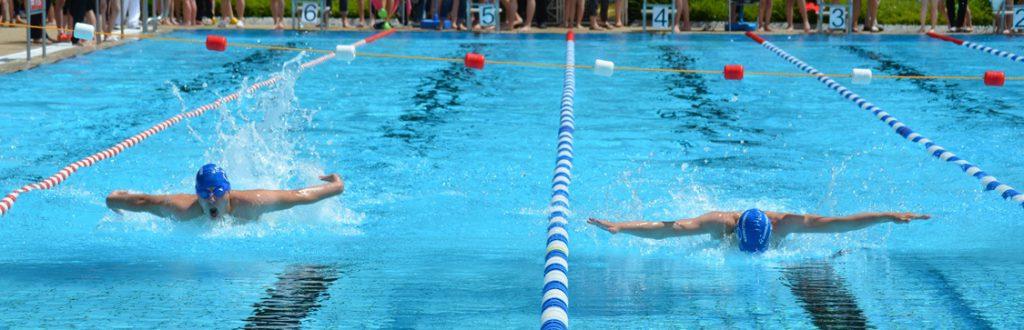 Sportkreisschwimmfest Sommer 2016 in Müllheim