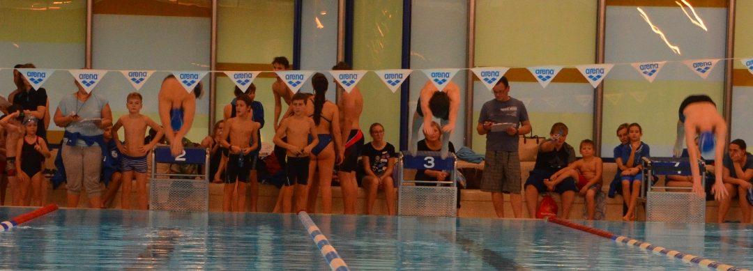 TVG-Vereinsmeisterschaften im Schwimmen 2017